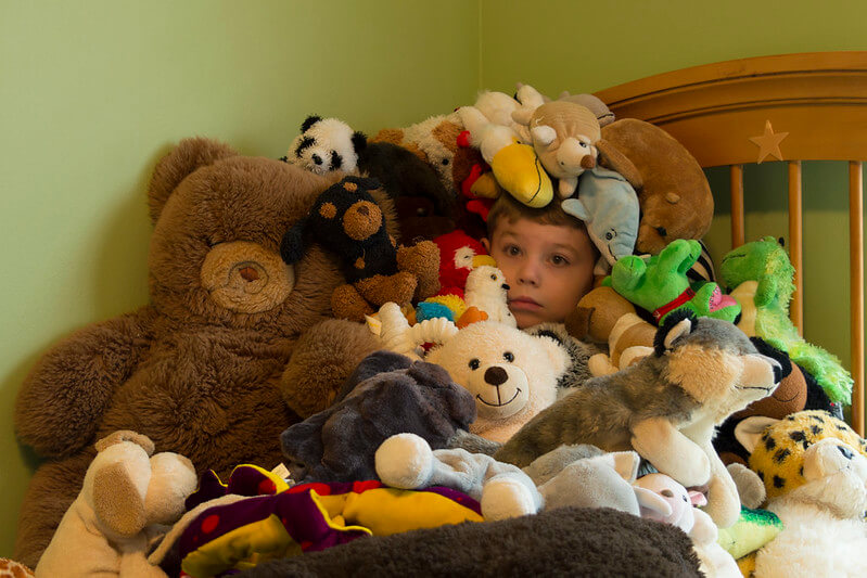 Soft toys heaped on the bed ready and waiting to get organised for a school photo.