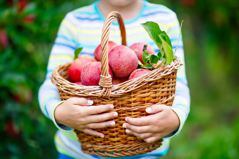 Child holding fruit.