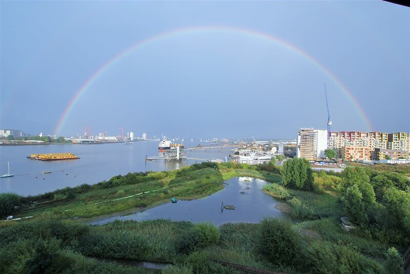 Reasons to visit the beautiful Greenwich Peninsula Ecology Park