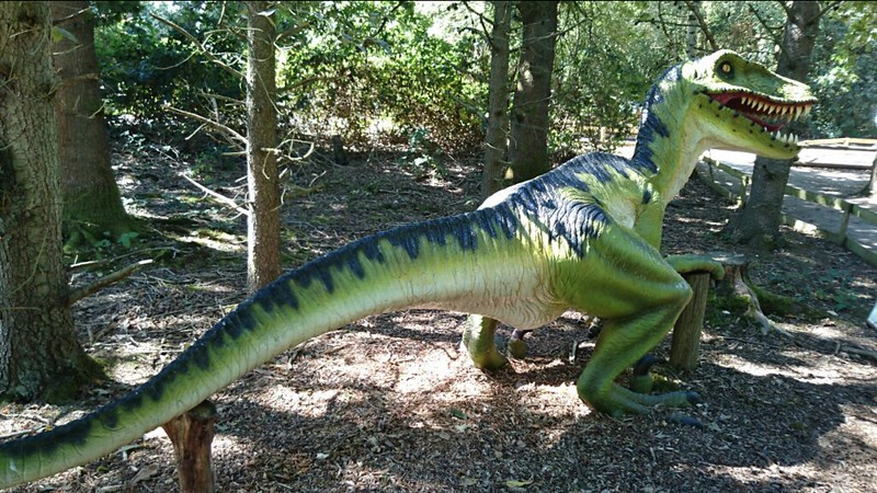Who wouldn't want to see dinosaurs at wellington country park, one of the best days out in reading with kids