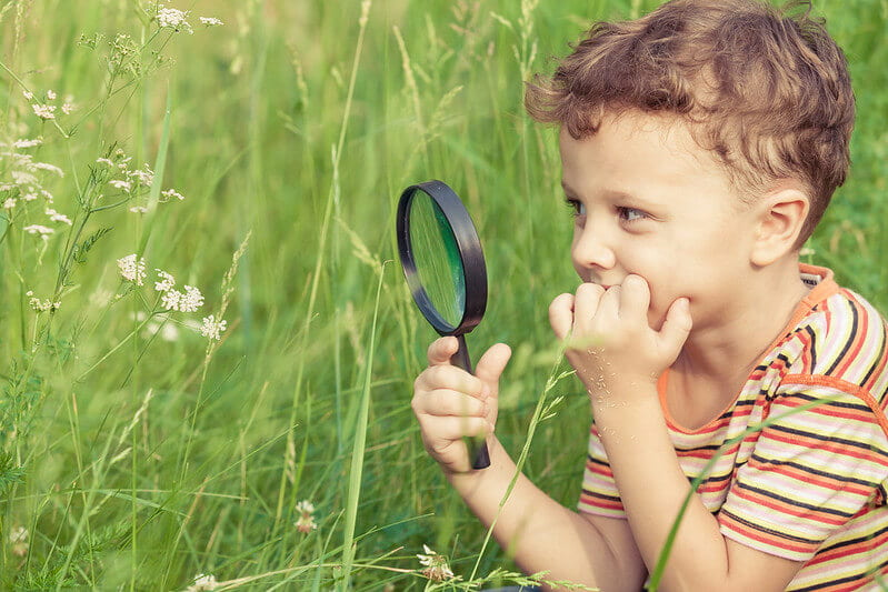 Some fantastic minibeasts activities could be looking in the grass with your magnifying glass like this boy, at Mission Invertebrate