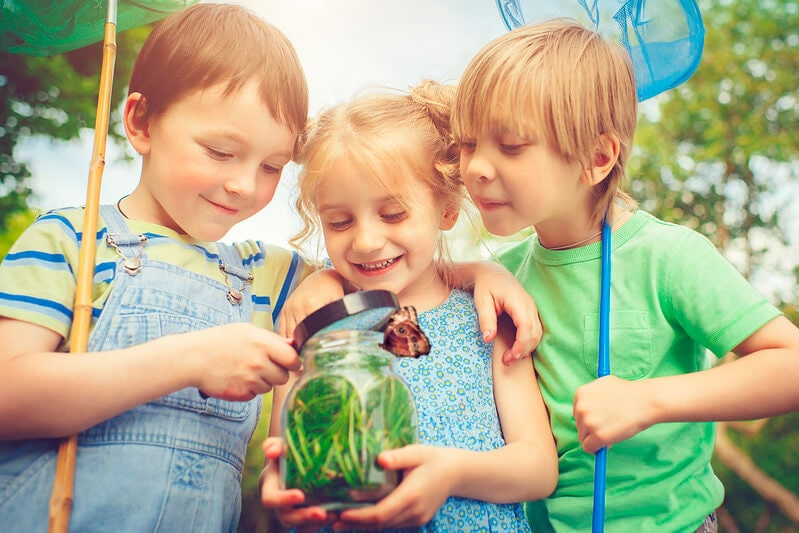 Children hunting for bugs in their back garden to put them in a jar for viewing is one of our fantastic minibeasts activities.