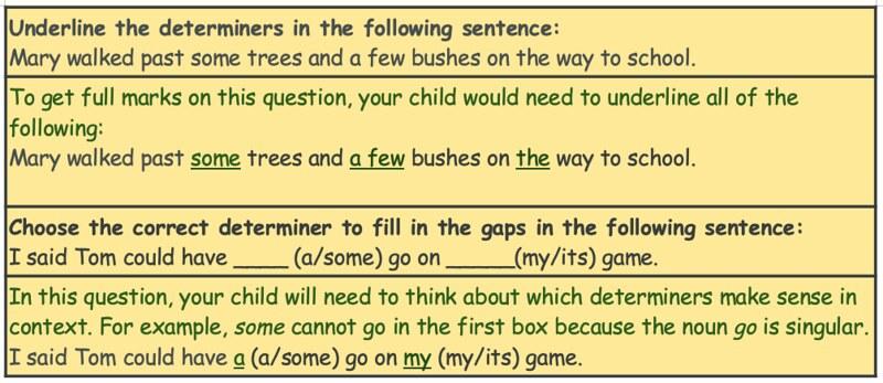 Sample of determiner KS2 questions