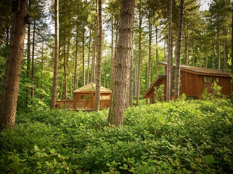 Lodges in Sherwood Forest for family holidays with teenagers