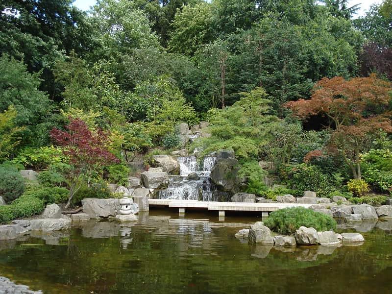 The peaceful Japanese garden at Holland Park.