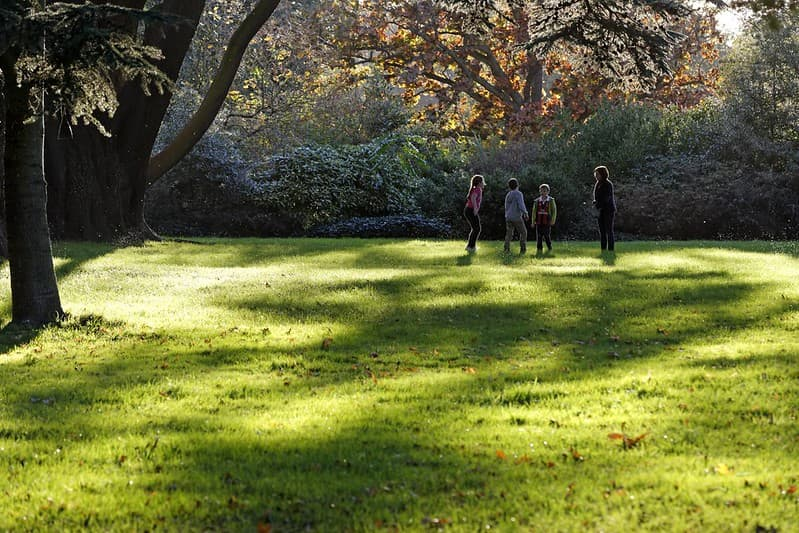 Children playing at Osterley Park.