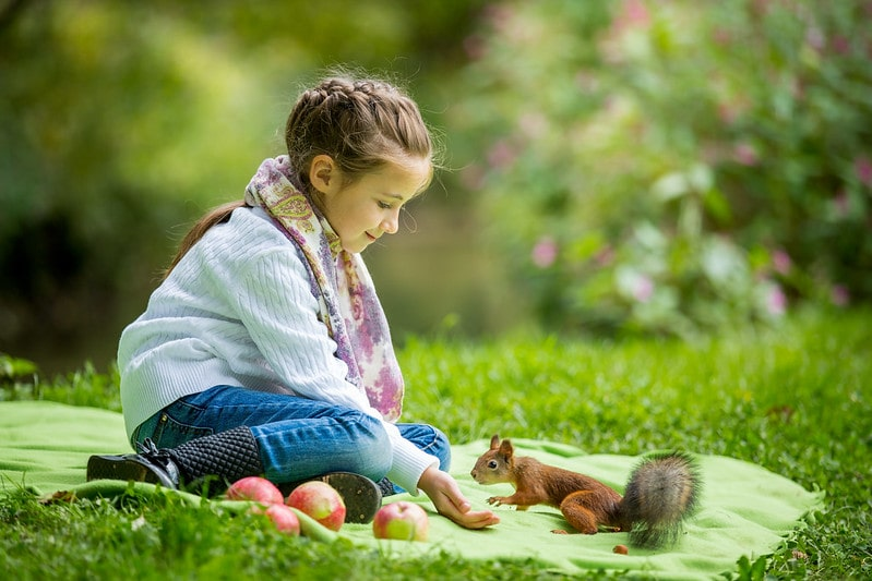 Little girl sat on a rug in the park feeding a squirrel.