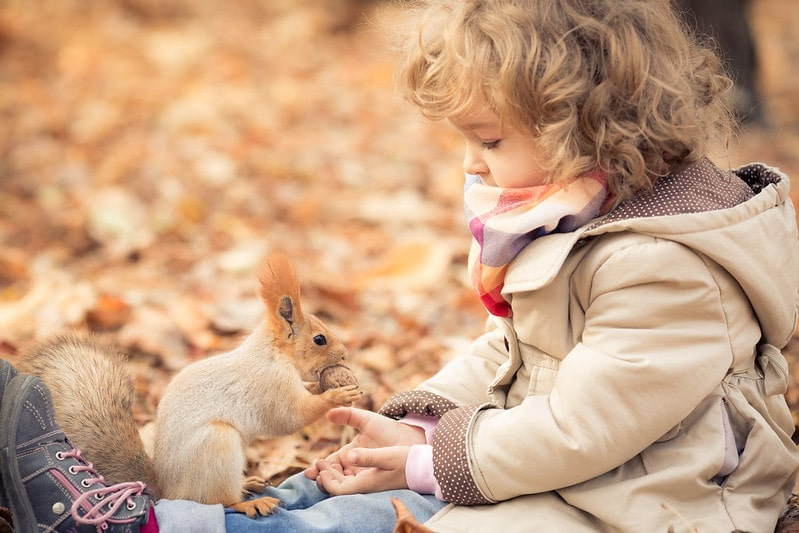 Little girl wearing scarf and coat feeding a squirrel with fluffy ears.