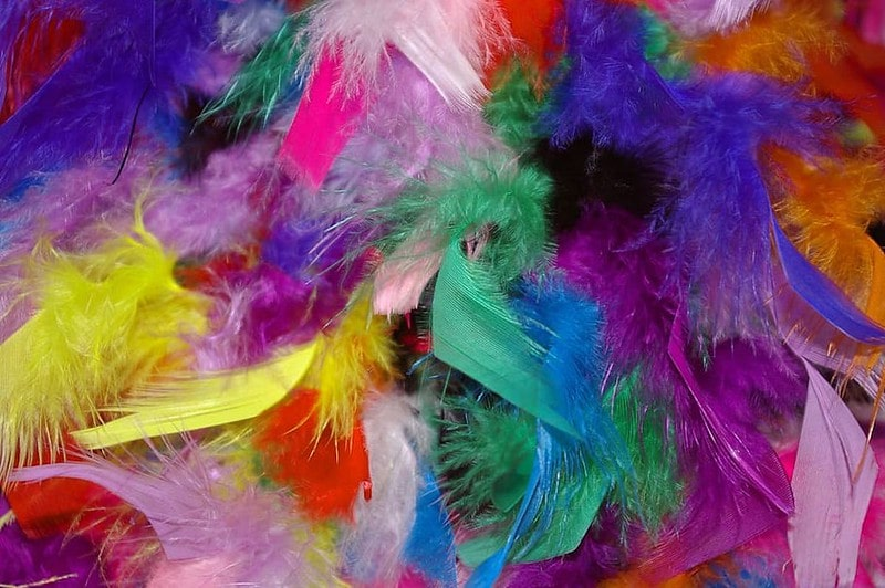 Colourful Feathers for Craft Making