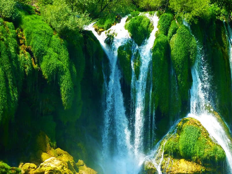 A lush green waterfall
