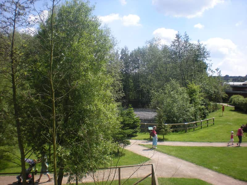 The nature landscape and scenery at Plantasia.