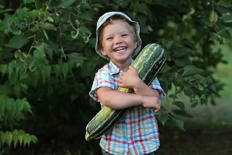 Little boy smiling and laughing while holding a big marrow.