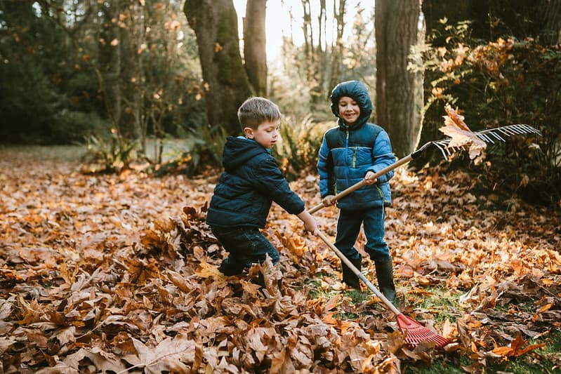Two boys raking the autumn leaves in a park.