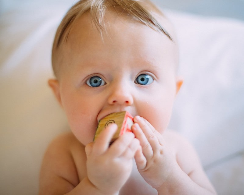 Blue-eyed baby holding a wooden block in its mouth.