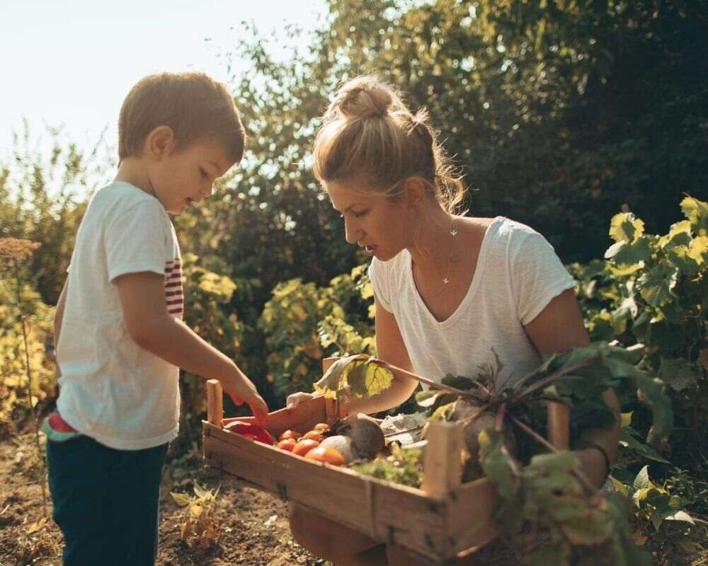 Planting vegetables together can be a fun and educational activity.