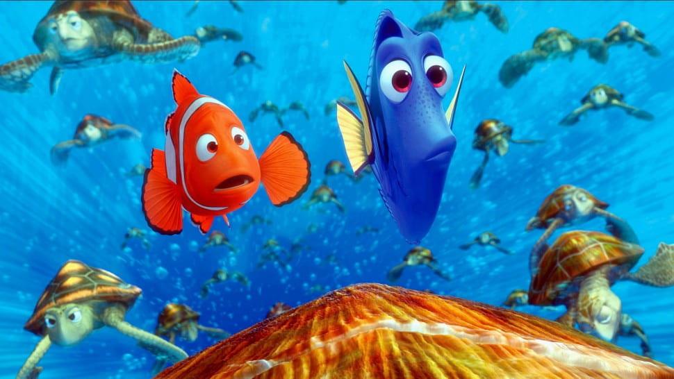 A still shot from Finding Nemo.