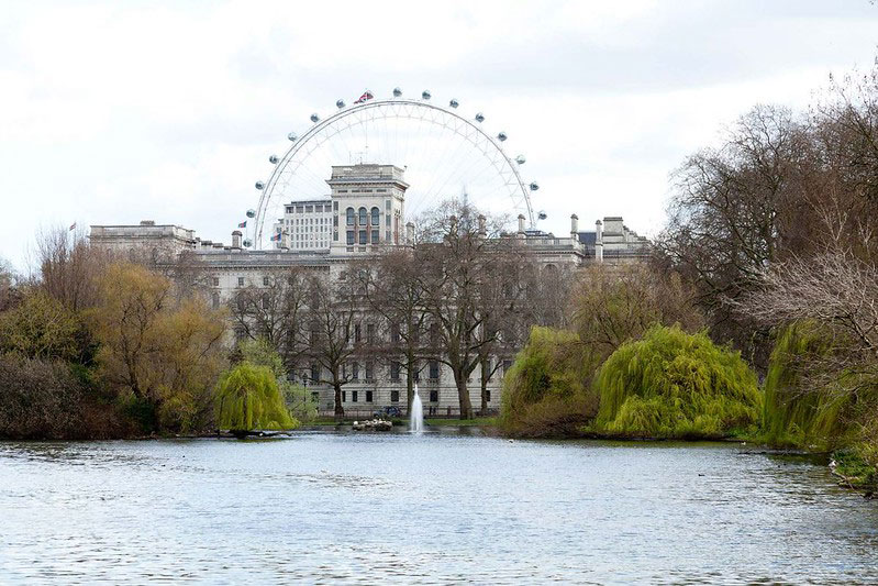 View of the London Eye from the lake at St James's Park.