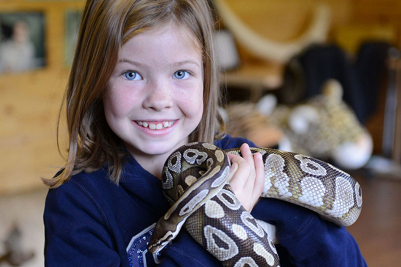 Young girl holding a snake at Paradise Wildlife Park.