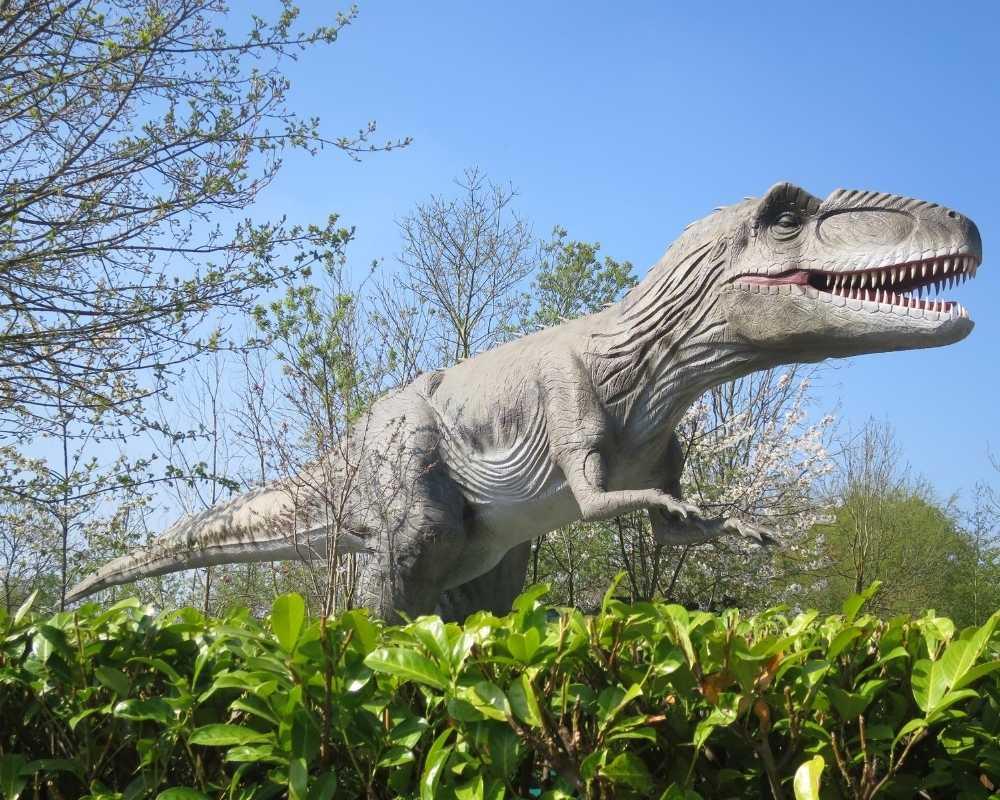 Gigantosaurus at Gulliver's Land, towering above the bushes.