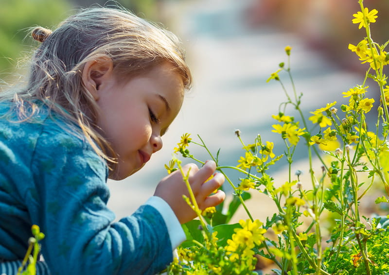 Preschooler stops to smell the flowers in the garden.