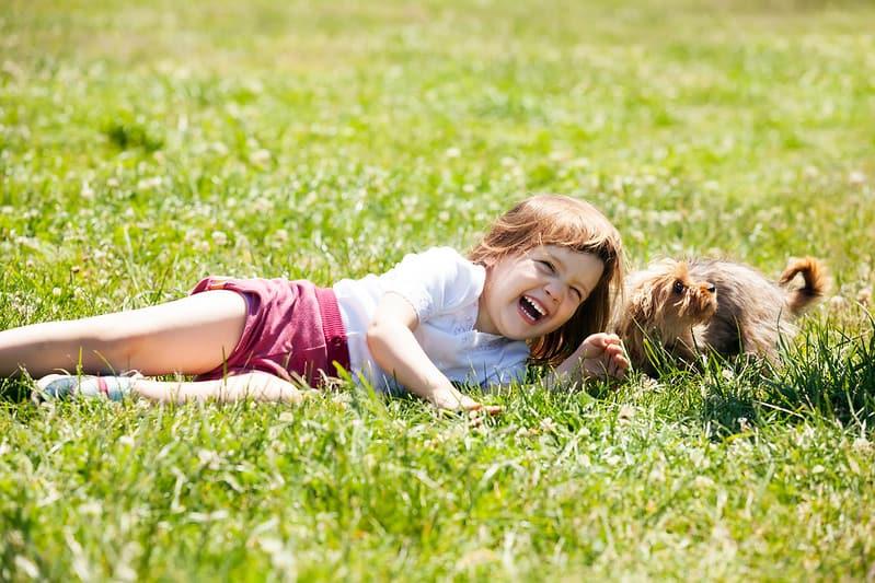 Little girl lying on the grass next to her dog laughing at Shrek jokes.