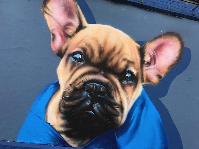 Staring dog street art.