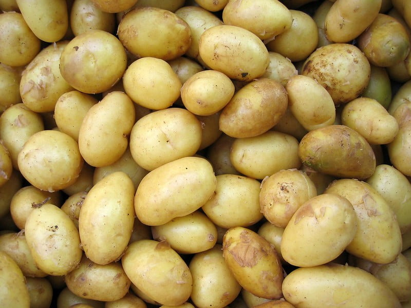 Lots of potatoes which have been washed and cleaned.
