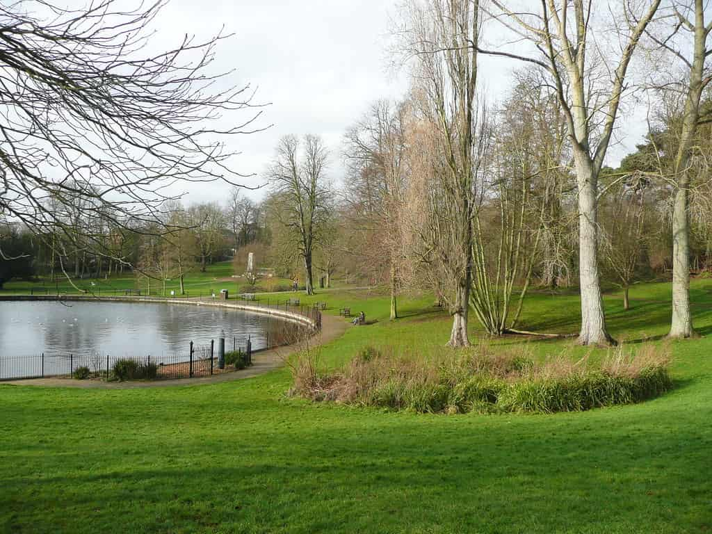 The trees and pond at Christchurch park in Ipswich.