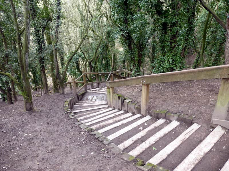 Staircase leading further down into the woodland at Humber Bridge Country Park.