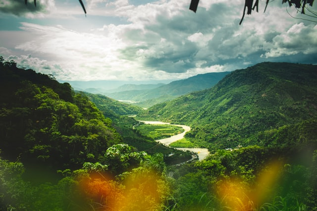 View over the Peruvian jungle from between the trees with a river winding through the grass.