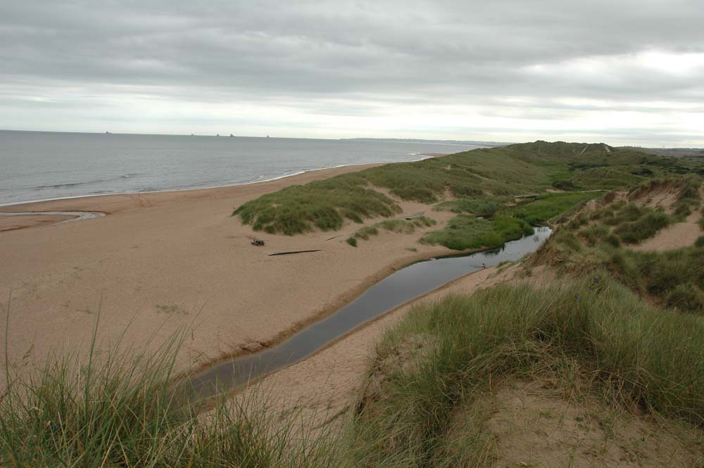Grassy hills over the sand at Balmedie Beach, Aberdeen.