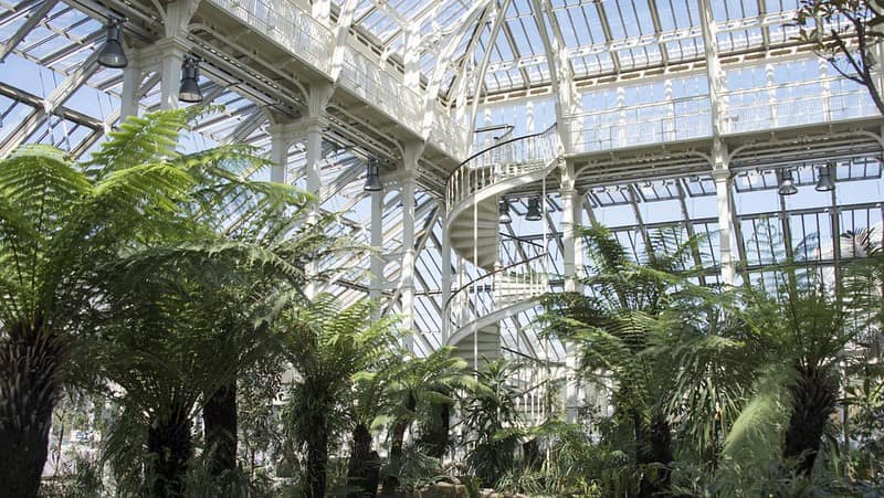 Inside the temperate house at Kew Gardens.