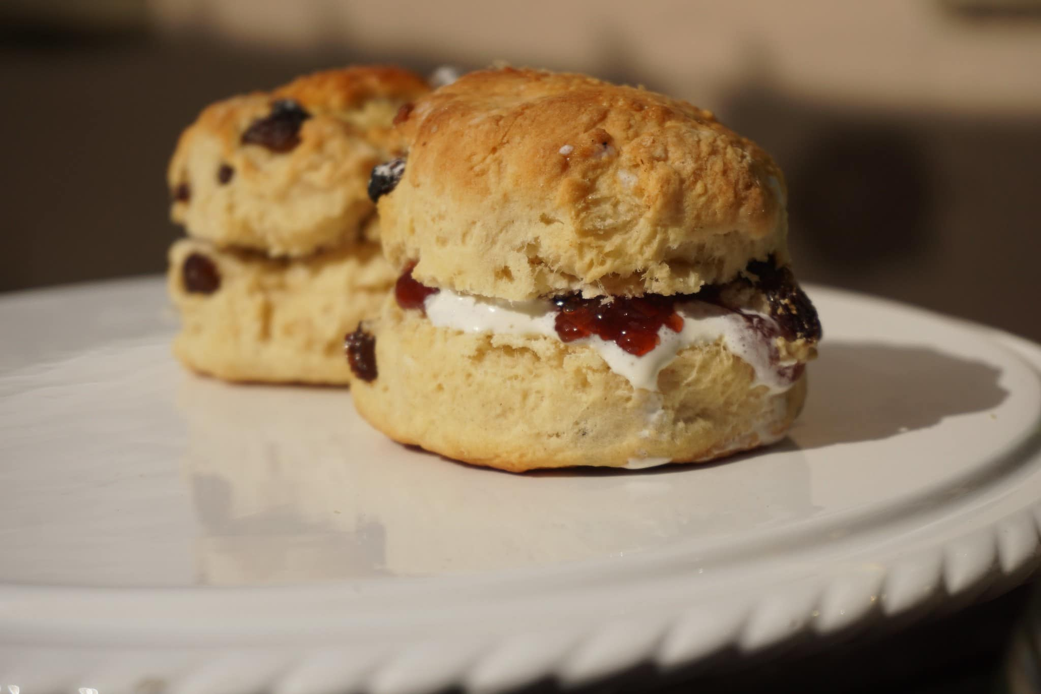 Fruit scones with clotted cream and jam on a plate.