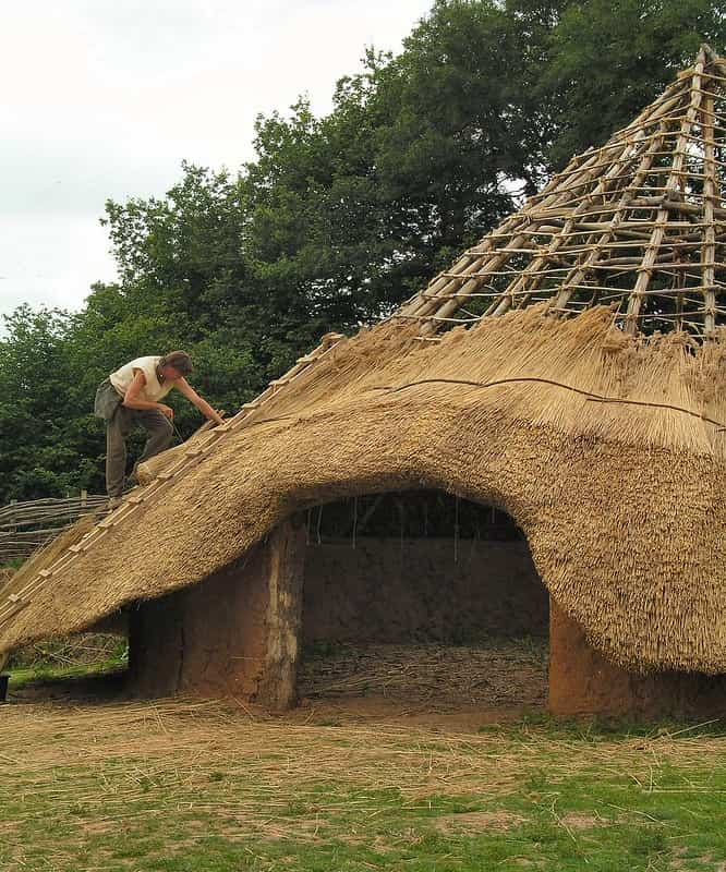Person making and building the thatched roof on an Iron Age roundhouse.