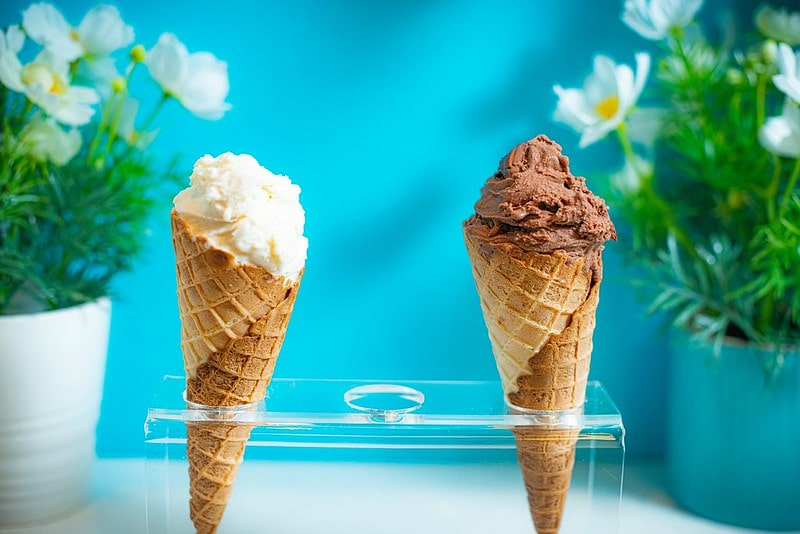 Vanilla and chocolate ice cream cones in a stand, with a blue background and flower pots behind.