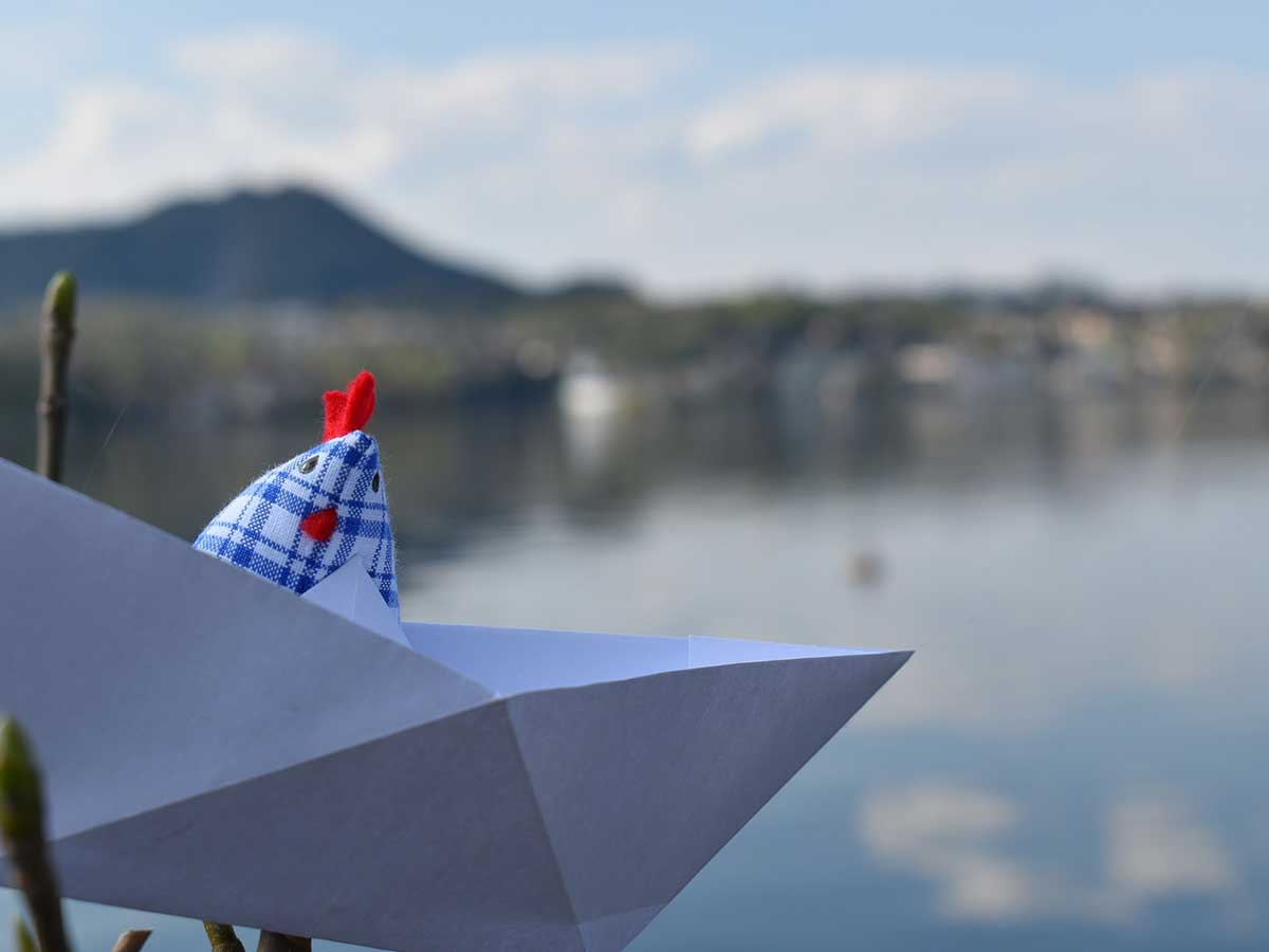 Checked fabric chicken sat in an origami boat by a lake.