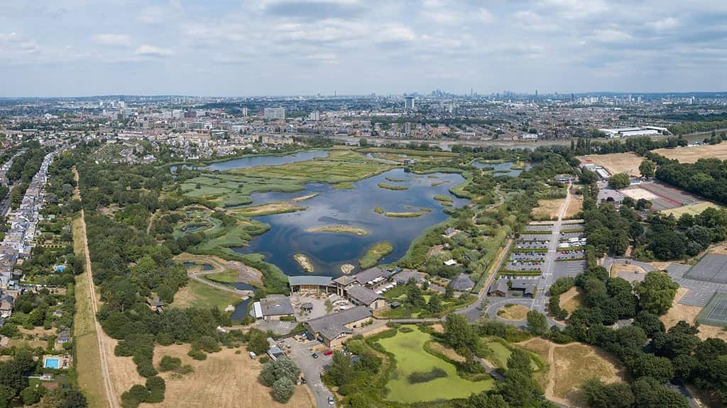 Aerial view of the London Wetland Centre.