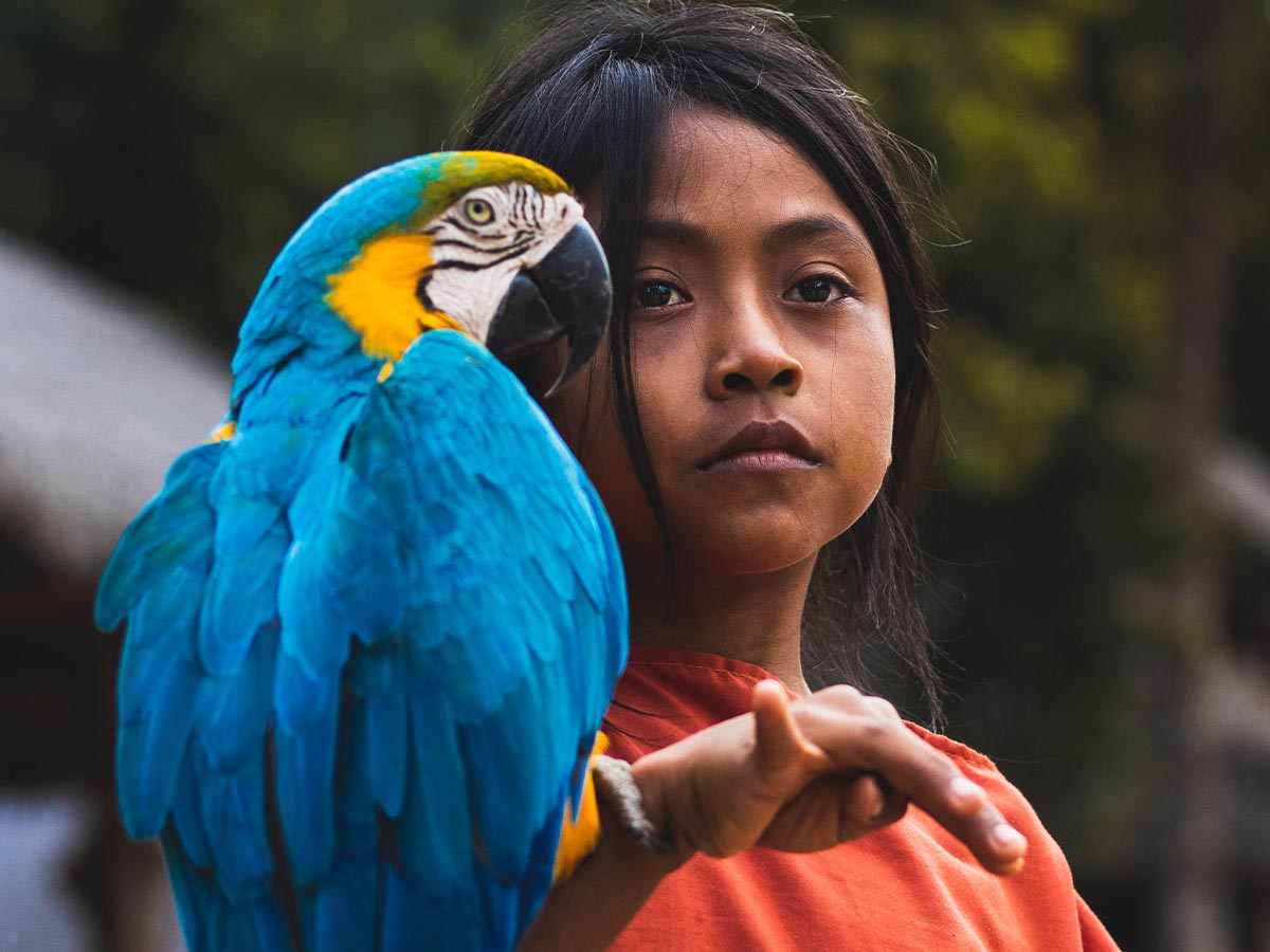 Young girl with a blue parrot perching on her arm.