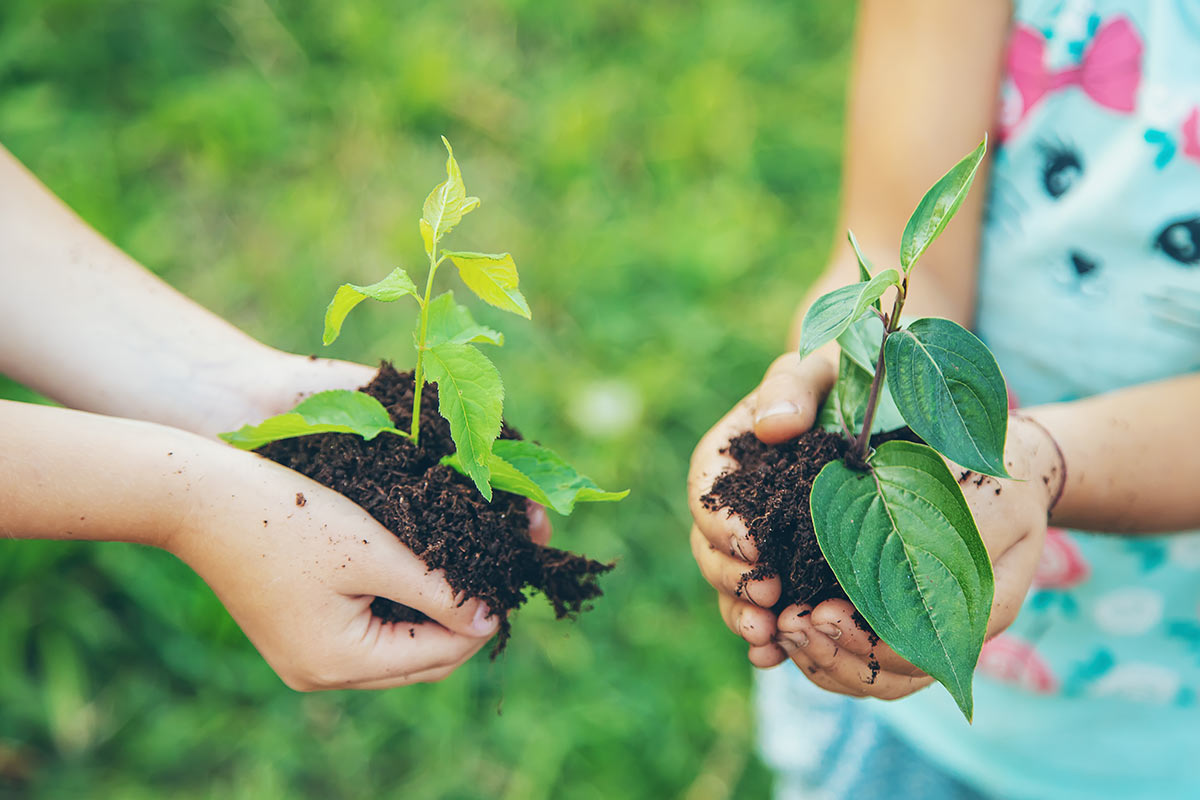 Two children holding a handful of soil with a plant growing in it.