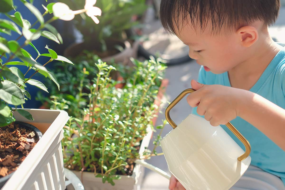 Young boy watering the plants with a white watering can.