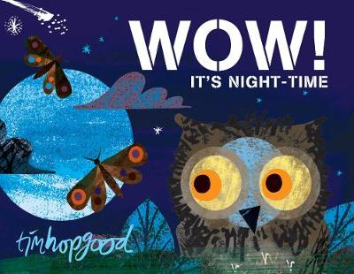 Wow! It's Night Time by Tim Hopgood.