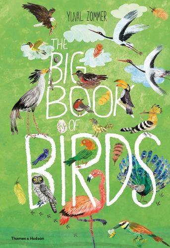 The Big Book Of Birds by Yuval Zommer.