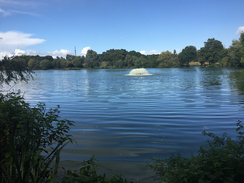 Stanborough Park south lake.