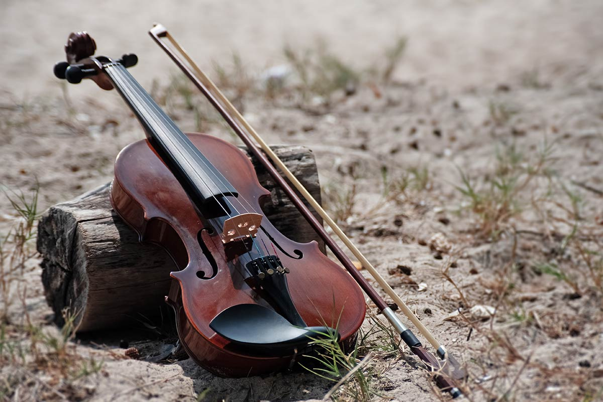 Violin and bow resting against a short log outside.