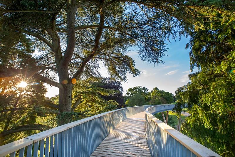 Bridge in Westonbirt Arboretum.
