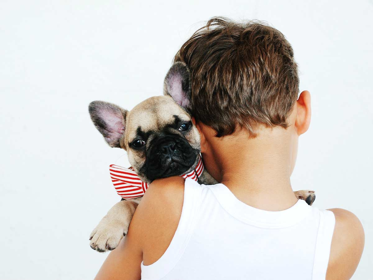 A young boy with his back to the camera hugs a cute pug wearing a red and white stripey bow tie.