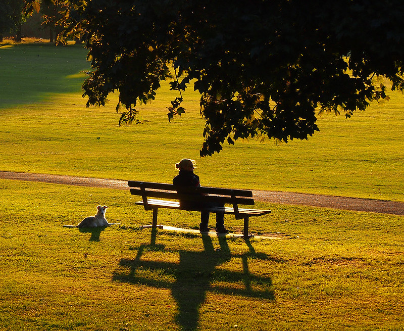 Woman and her dog sitting on park bench.