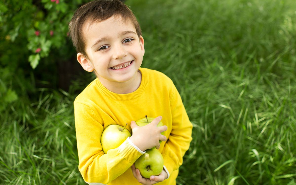 Young boy holding a bunch of green apples, smiling in the garden as he looks at the symmetry of different objects.