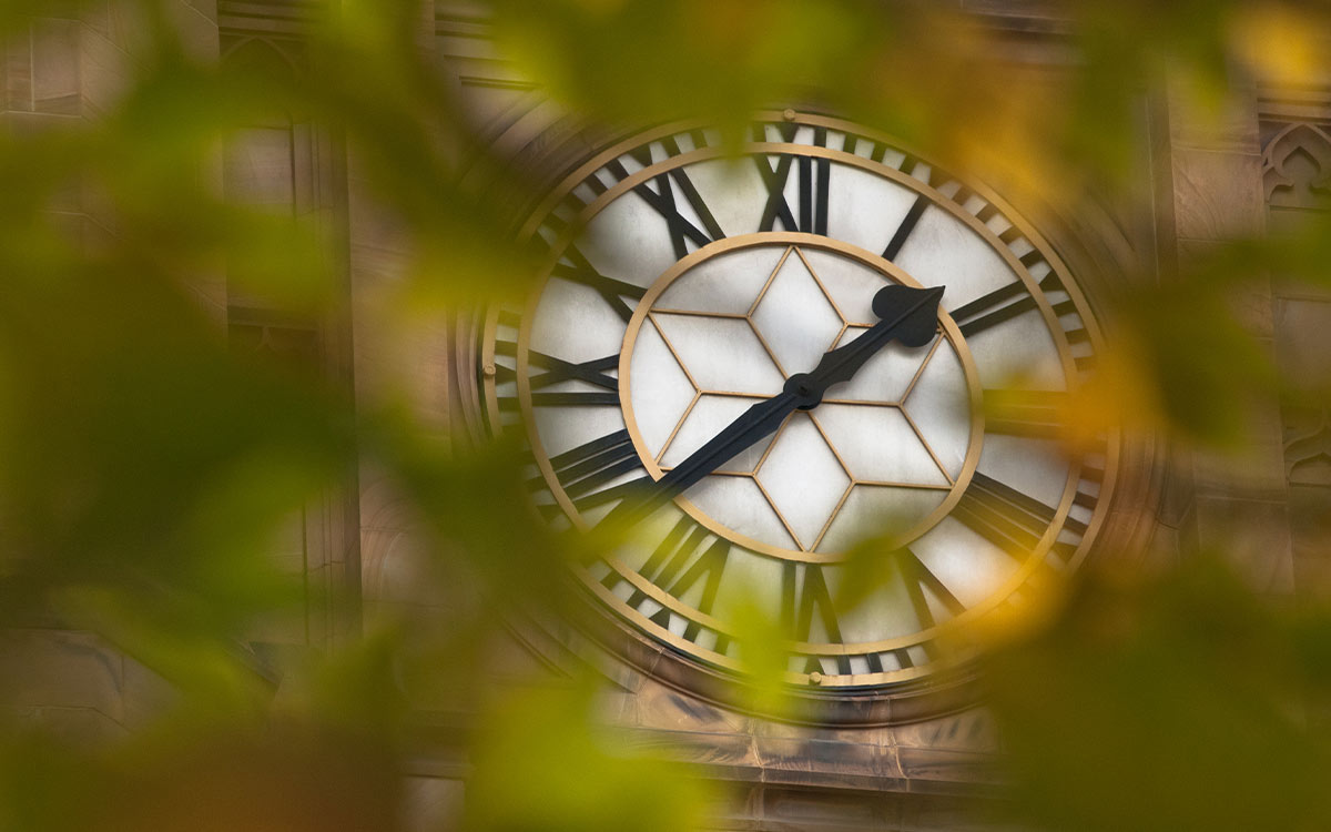 A close up image of a large clock face with Roman numerals which is framed by some leaves from a nearby tree.