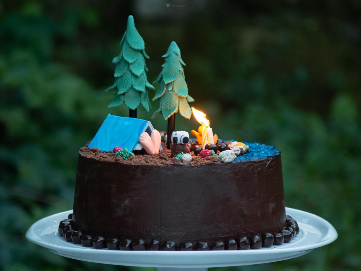 A chocolate cake covered in brown icing and decorated to look like the forest where the Gruffalo is set, fondant trees, plants and a tent sit on top of the cake.